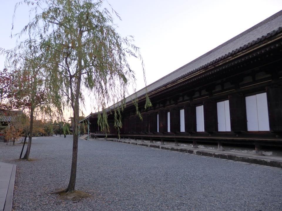 <京都と奈良の旅の記録 NO.2>No.239